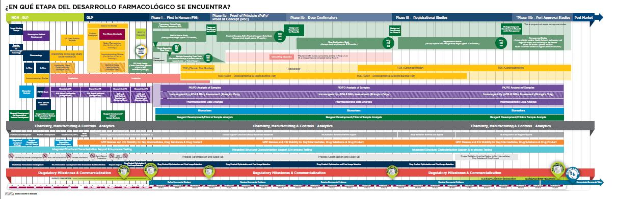 Mapa del proceso de desarrollo farmacológico de Covance
